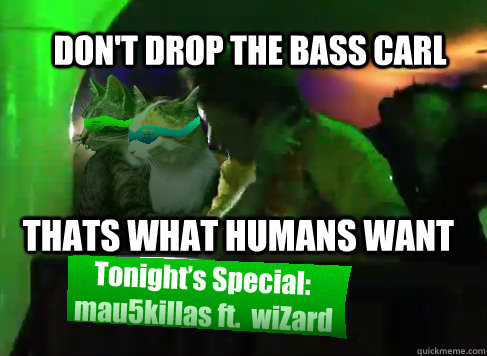 Dont Drop The Bass Carl Thats What Humans Want Restraining Dj Cat