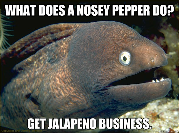 What does a nosey pepper do? Get jalapeno business. - What does a nosey pepper do? Get jalapeno business.  Bad Joke Eel