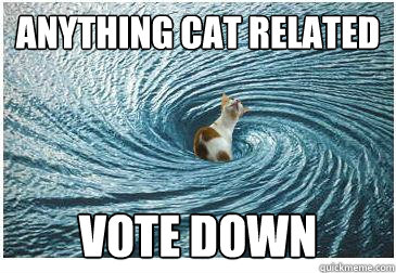 Anything Cat related vote down
