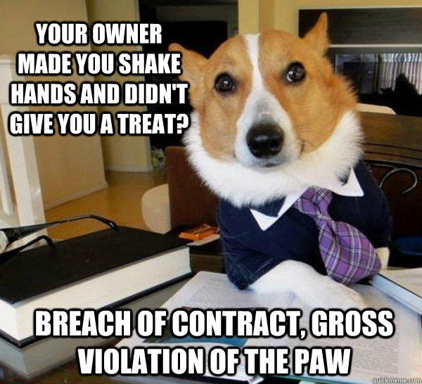 Your owner made you shake hands and didn't give you a treat? Breach of contract, gross violation of the paw  Lawyer Dog