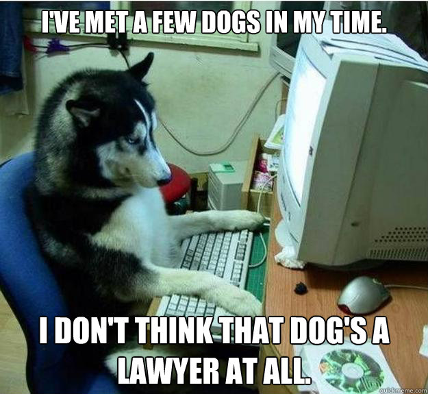 I've met a few dogs in my time. I don't think that dog's a lawyer at all.