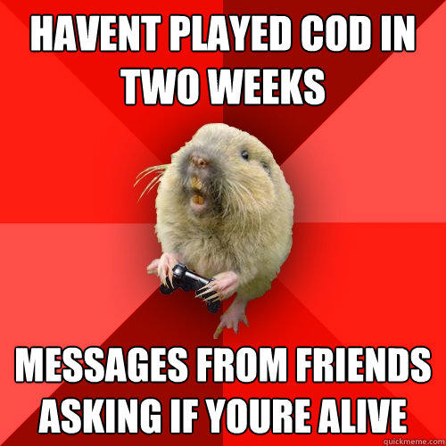 havent played cod in two weeks messages from friends asking if youre alive
