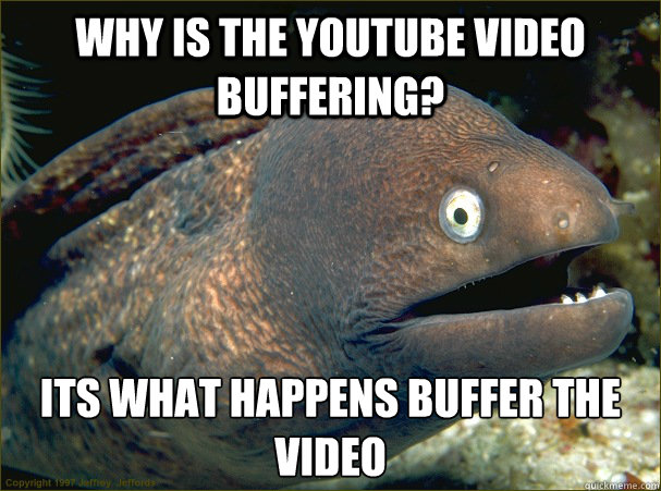 why is the youtube video buffering? its what happens buffer the video - why is the youtube video buffering? its what happens buffer the video  Bad Joke Eel