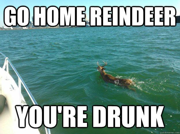 go home reindeer You're drunk - go home reindeer You're drunk  Misc