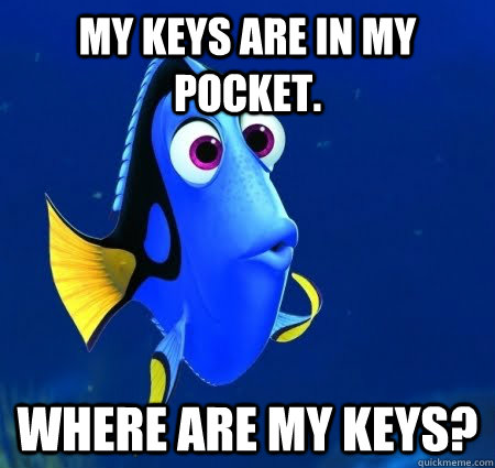 My keys are in my pocket. Where are my keys?  Forgetful Dory