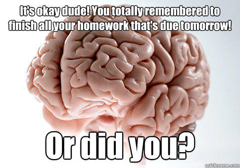 It's okay dude! You totally remembered to finish all your homework that's due tomorrow! Or did you? - It's okay dude! You totally remembered to finish all your homework that's due tomorrow! Or did you?  Scumbag Brain