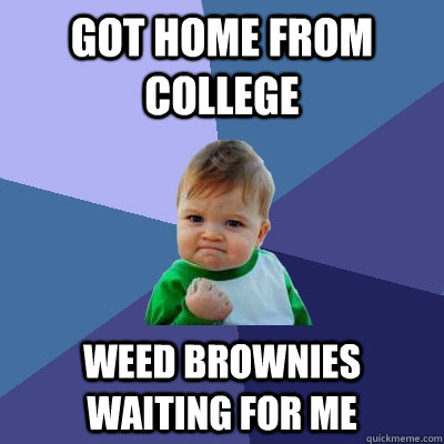 got home from college weed brownies waiting for me - got home from college weed brownies waiting for me  Success Kid
