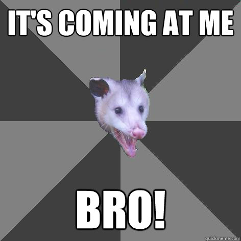 It's Coming at me Bro!  Awesome Possum