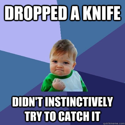 Dropped a knife Didn't instinctively try to catch it - Dropped a knife Didn't instinctively try to catch it  Success Kid