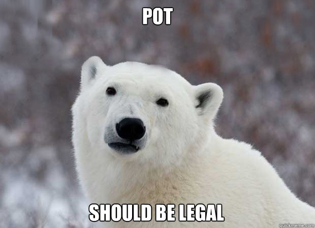 pot should be legal - pot should be legal  Popular Opinion Polar Bear