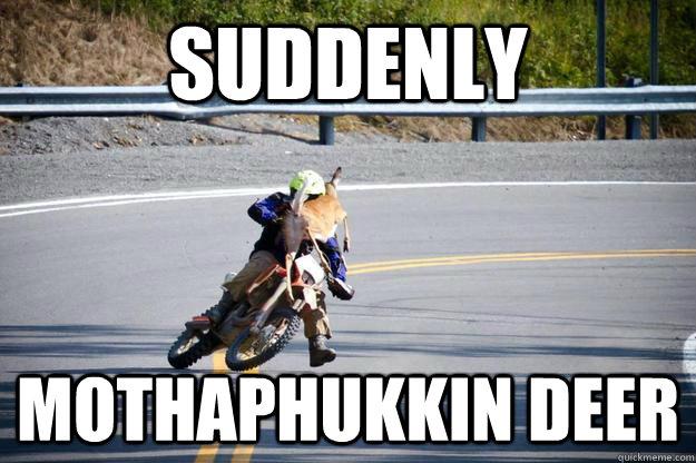 62a5d030eca13efe9616693b75ea54b9669c16e1b980eb52aba933a46fef1403 deer hunter memes quickmeme,Funny Deer Memes