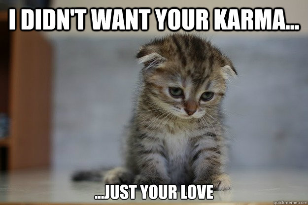 i didn't want your karma... ...just your love - i didn't want your karma... ...just your love  Sad Kitten