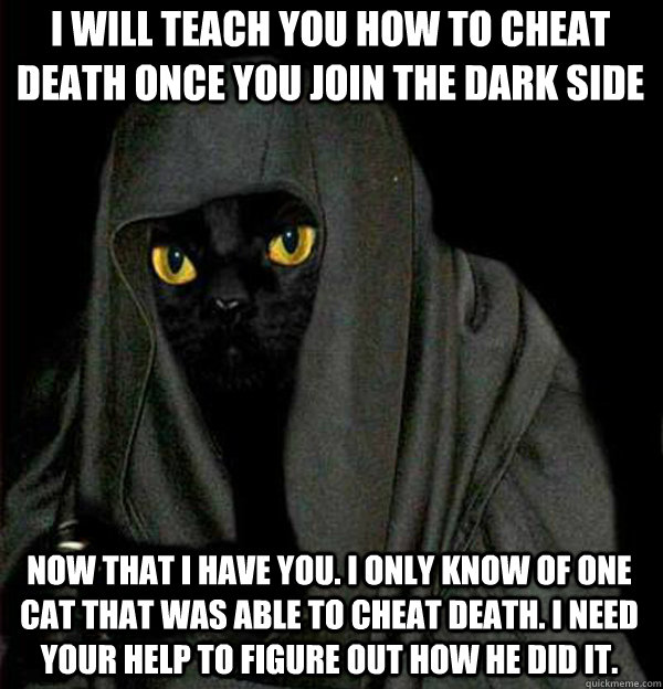I will teach you how to cheat death once you join the dark side Now that I have you. I only know of one cat that was able to cheat death. I need your help to figure out how he did it.