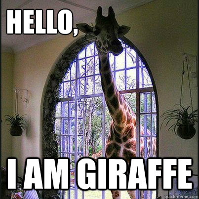 Hello, I am Giraffe - Hello, I am Giraffe  Curious Giraffe
