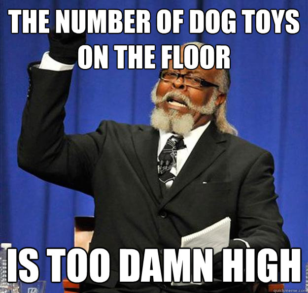 The number of dog toys on the floor Is too damn high - The number of dog toys on the floor Is too damn high  Jimmy McMillan