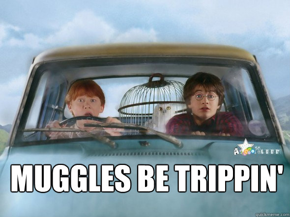 Muggles be trippin' - Muggles be trippin'  Misc