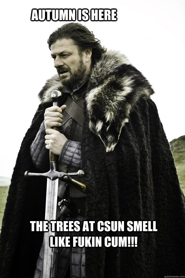 Autumn is here The trees at CSUN smell like fukin cum!!!