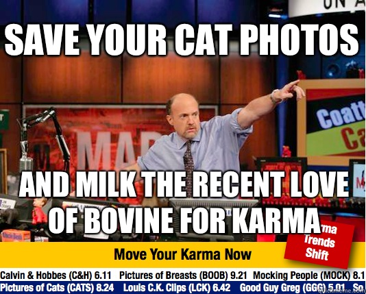 Save your cat photos And milk the recent love of bovine for karma - Save your cat photos And milk the recent love of bovine for karma  Mad Karma with Jim Cramer
