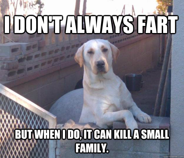 I don't always fart but when I do, it can kill a small family.