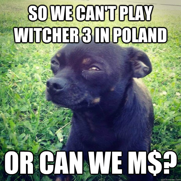 So we can't play Witcher 3 in poland or can we M$? - So we can't play Witcher 3 in poland or can we M$?  Skeptical Dog