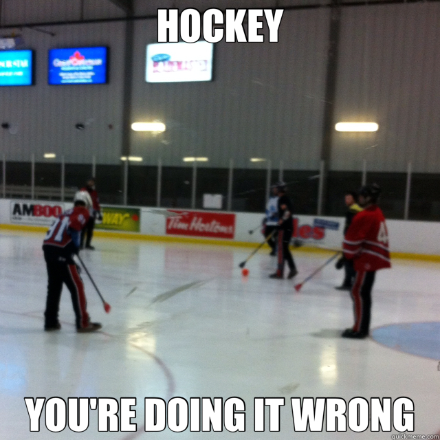 HOCKEY YOU'RE DOING IT WRONG - HOCKEY YOU'RE DOING IT WRONG  bsbsbs