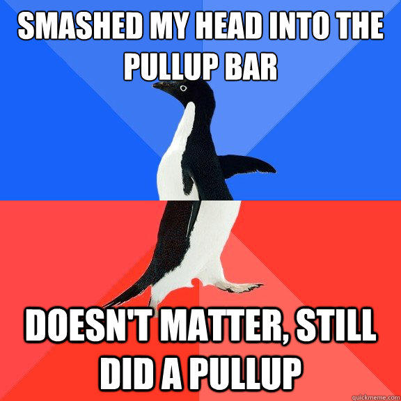 Smashed my head into the pullup bar Doesn't matter, still did a pullup  Socially Awkward Awesome Penguin