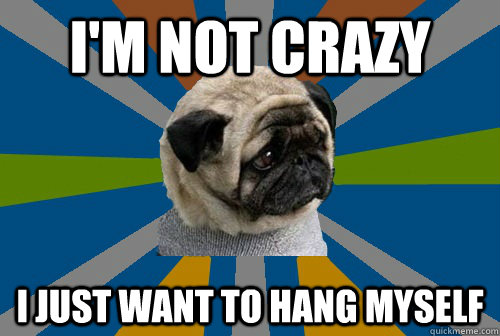 I'm not crazy I just want to hang myself