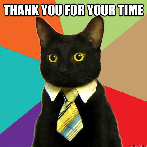 Thank you for your time  - Thank you for your time   Business Cat