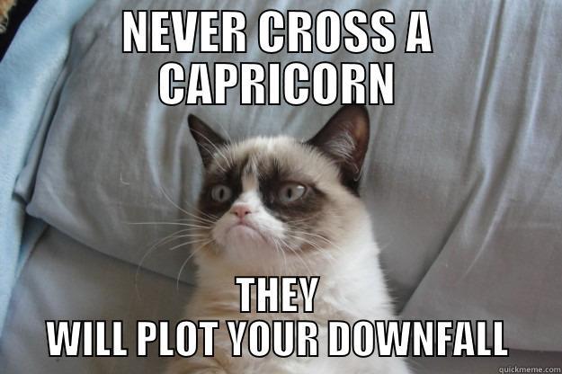 Capricorn Grumpy Cat - NEVER CROSS A CAPRICORN THEY WILL PLOT YOUR DOWNFALL Grumpy Cat