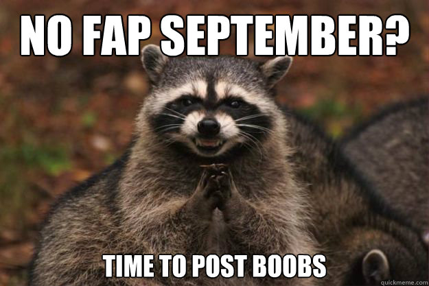 No Fap September? Time to post boobs - No Fap September? Time to post boobs  Evil genius racoon