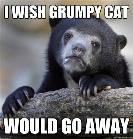i wish grumpy cat would go away - Confession Bear - quickmeme Go Away Meme