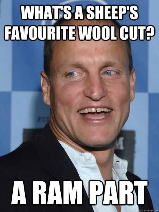 what's a sheep's favourite wool cut? A ram part