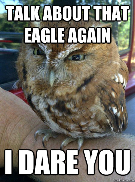 Talk about that Eagle again I dare you - Talk about that Eagle again I dare you  Ornery Owl