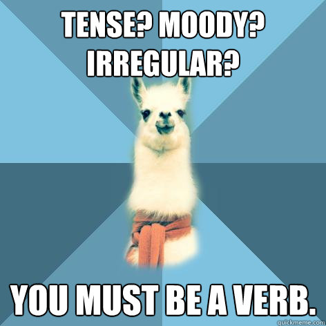 Tense? moody? irregular? you must be a verb.  Linguist Llama