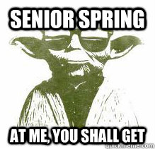 Senior spring At me, you shall get  YOLO Yoda