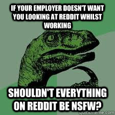 If your employer doesn't want you looking at Reddit whilst working Shouldn't everything on Reddit be NSFW?  Bo Philosorapter