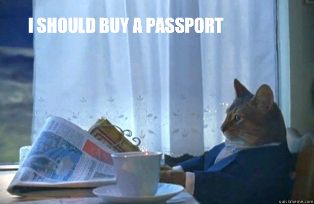 I should buy a passport - I should buy a passport  Sophisticated Cat