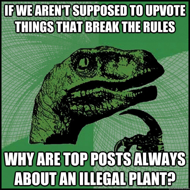 if we aren't supposed to upvote things that break the rules why are top posts always about an illegal plant?