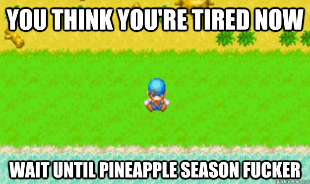 You think you're tired now wait until pineapple season fucker - You think you're tired now wait until pineapple season fucker  Harvest Moon