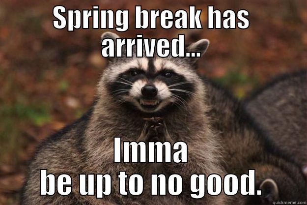 Spring Break Is Upon Us Quickmeme