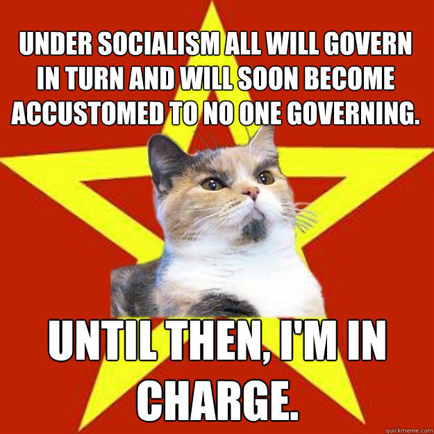 Under socialism all will govern in turn and will soon become accustomed to no one governing. Until then, I'm in charge.  Lenin Cat