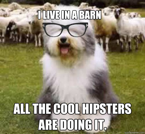 642e291f3398ec12785dc498c6ff550a14388c6a5addc97a313065db73adfa64 i live in a barn all the cool hipsters are doing it hipster,Funny Barn Memes