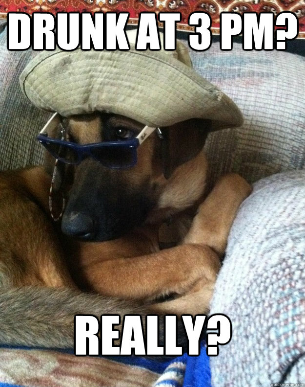 Drunk at 3 PM? Really?  Judgemental Dog