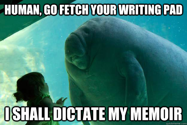 human, go fetch your writing pad I shall dictate my memoir - human, go fetch your writing pad I shall dictate my memoir  Overlord Manatee
