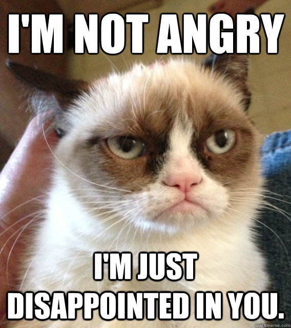 i'm not angry  I'm just disappointed in you. - i'm not angry  I'm just disappointed in you.  Not Amused Grumpy Cat