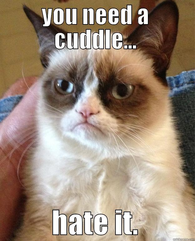 hate it - YOU NEED A CUDDLE... HATE IT. Grump Cat