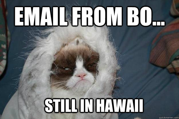 email from Bo... still in hawaii - email from Bo... still in hawaii  Cold Grumpy Cat