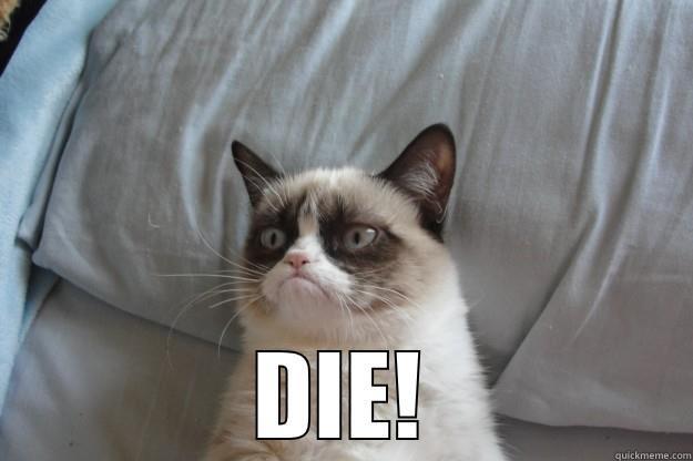 DIE! Grumpy Cat