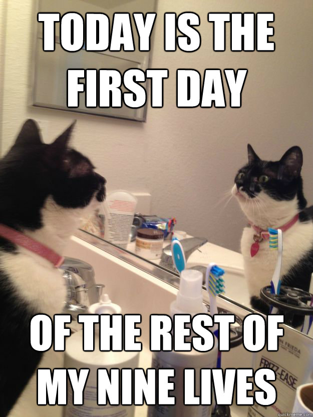 Today is the first day of the rest of my nine lives