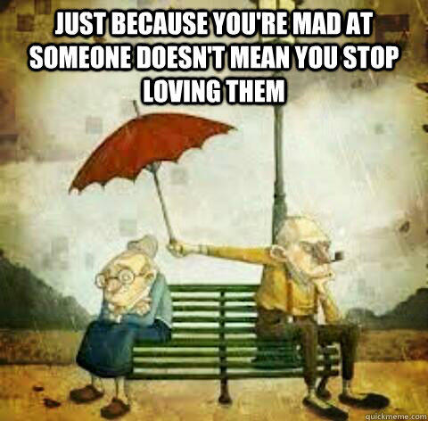 Just because you're mad at someone doesn't mean you stop loving them  - Just because you're mad at someone doesn't mean you stop loving them   This is true.